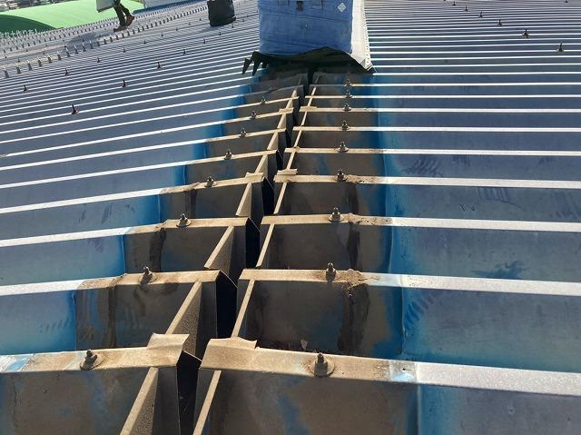 桜川市で折板屋根の棟包み剥がし終えた画像