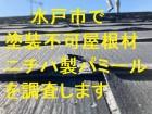 水戸市で塗装不可のニチハ製パミールを調査