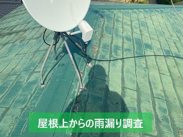 屋根上からの雨漏り調査