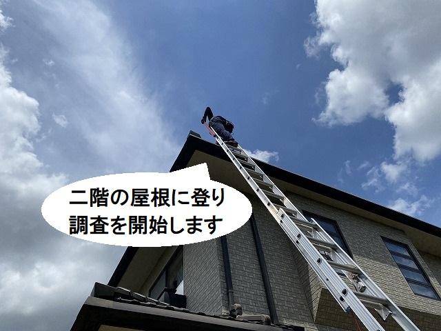 二階部まで梯子を掛け、屋根に登っていくスタッフ