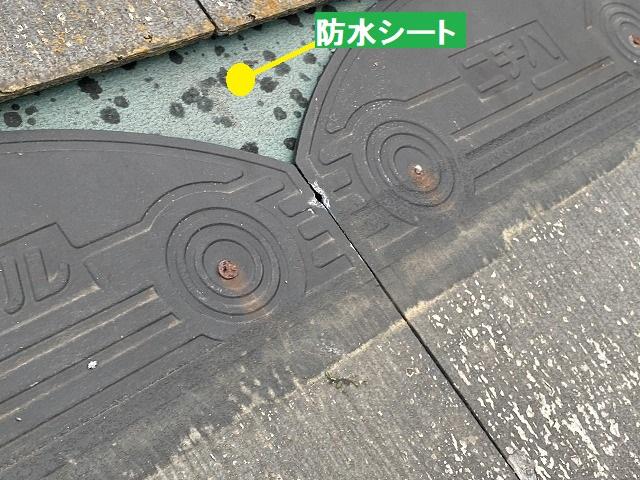 スレート屋根材が脱落し、防水シートが剥き出しになっている