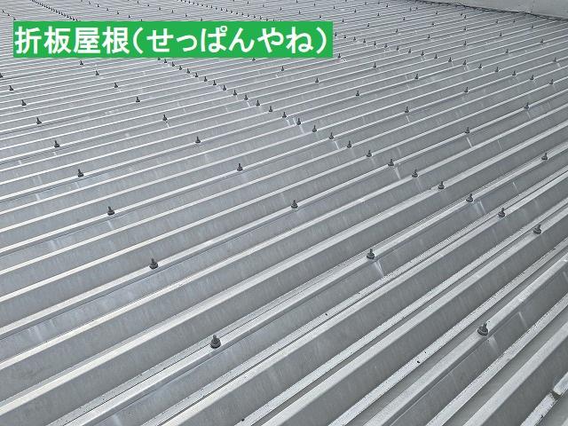 シルバーの折板屋根