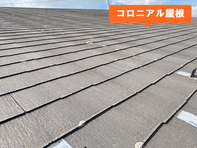 常陸太田市で片流れのコロニアル屋根と外壁を診断します