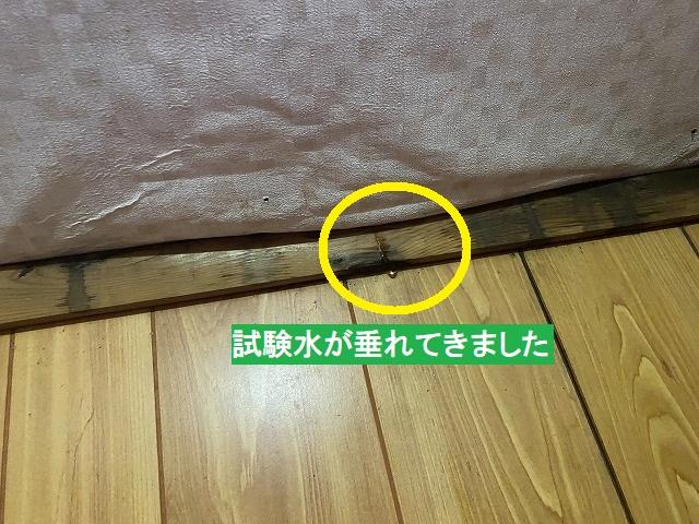 階段の天井に垂れてきた散水試験水