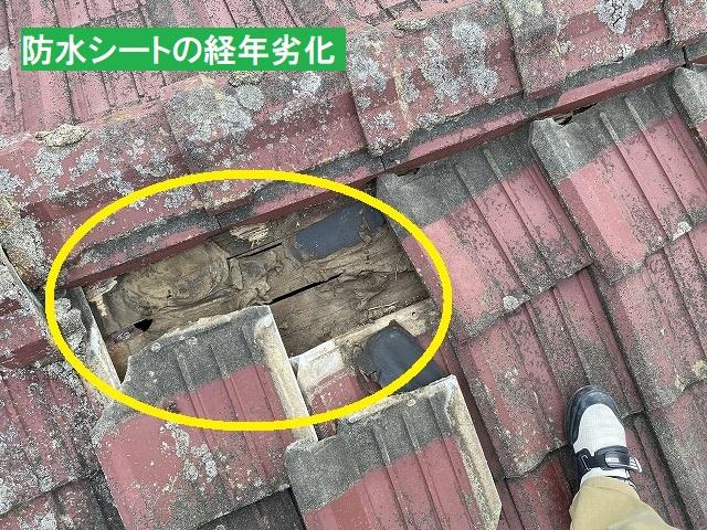 セメント瓦を捲り、防水シートの経年劣化破損を確認