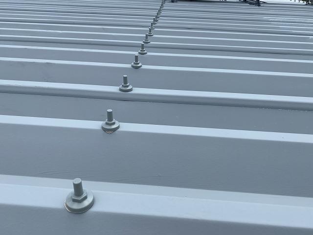 折板屋根へのボルトキャップ設置が完了