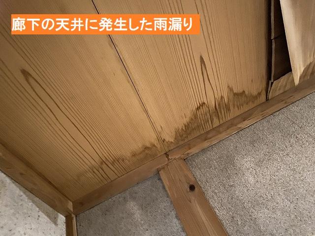 廊下の天井に発生した雨漏り