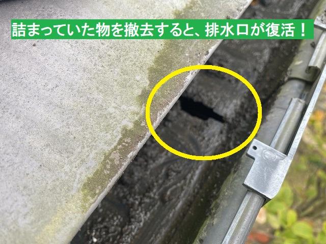 泥詰まりを撤去すると排水口が現れる