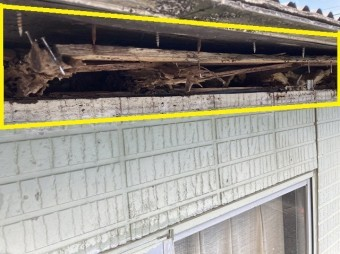 軒先側から覗く屋根下地の破損状況