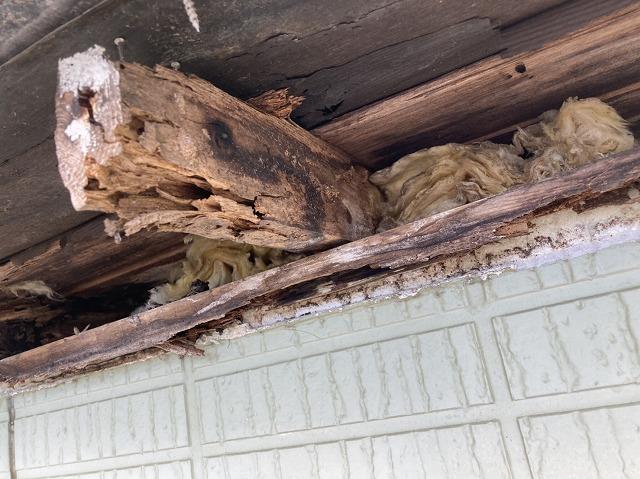 雨漏りしている屋根垂木が酷く腐食している