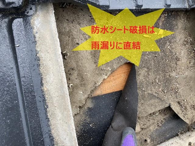 防水シートの破損は、雨漏りに直結します