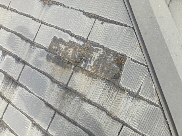 水戸市のスレート屋根は全体にに水が浸透している