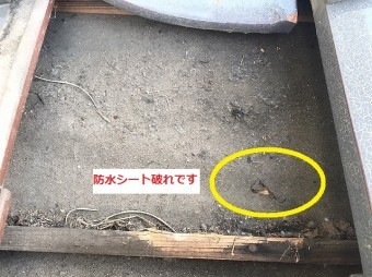 瓦を外すと防水シートが破損しています