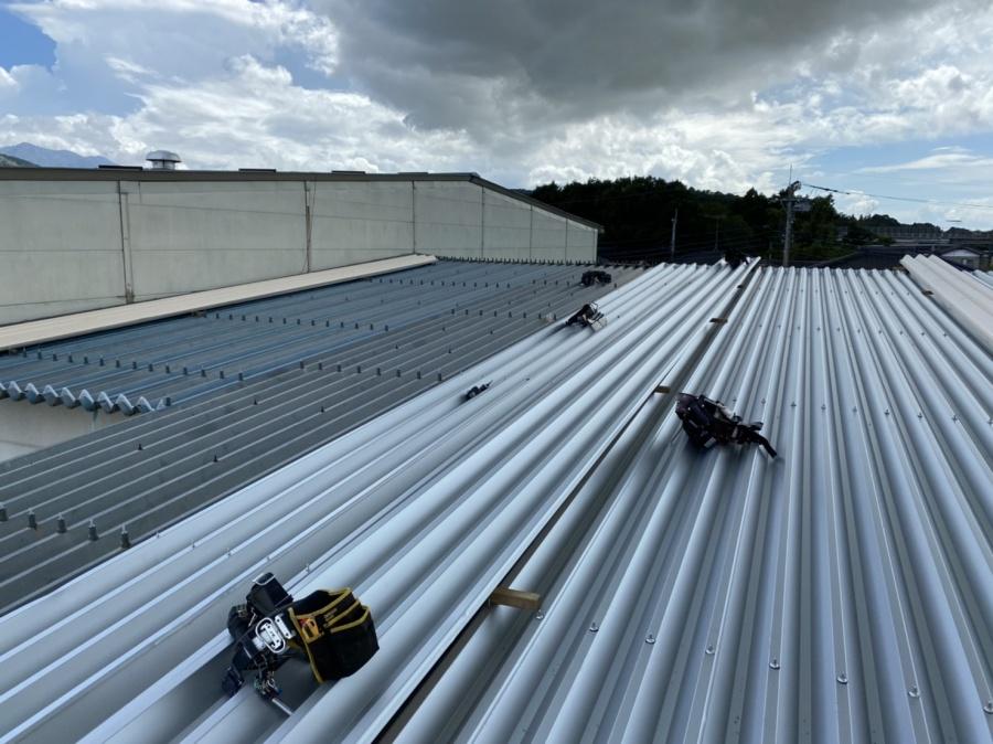 桜川市で折板屋根施工を行なっている様子