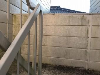 Aコーポ階段コケ