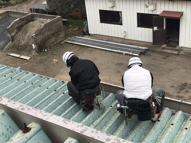 折板屋根のボルトを外す作業員