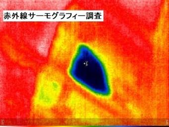 サーモグラフィーカメラを使用し、雨漏りの状態を確認