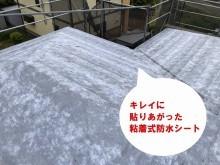 ひたちなか市のパミールへのカバー工法に使用するタディスセルフカバーの貼り上がり画像