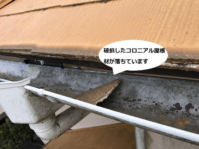 昨年の台風で破損したコロニアル屋根材の欠片が雨樋の中に落ちていた