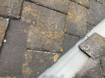 カラーベスト屋根材が破損し本来見えない留め具が剥き出しになっている