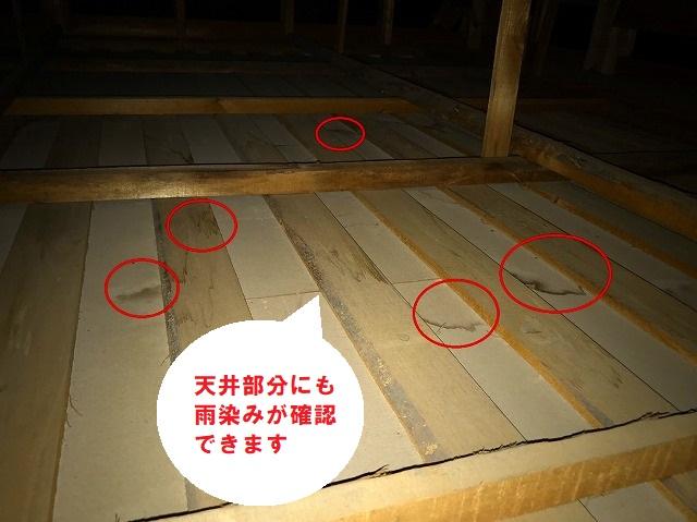 日立市の瓦棒葺き屋根雨漏りは経年劣化が原因で天井雨染み被害の現場調査の小屋裏雨漏り調査で天井下地に雨染み確認