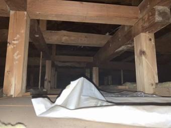 天井裏にライトを照射して雨漏り浸水口を捜索