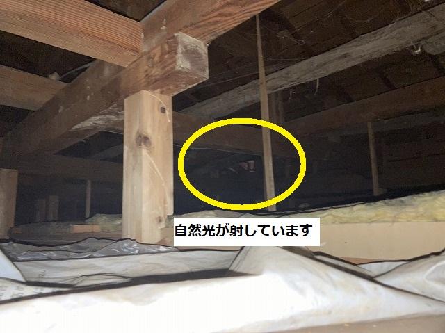 屋根裏から雨漏りしている上部に自然光が射しているのが確認できる