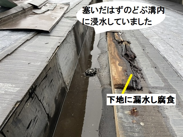 塞いだはずのどぶ溝に浸水しています
