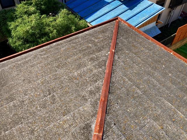 屋根全体にコケも生えています