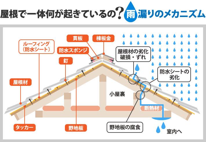 屋根からの雨漏りのメカニズム