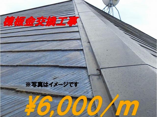 棟板金交換m/6,000円から受け付けております